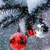 Crăciun Fericit! Deputat Neagu Murgu – preşedinte UNPR Vrancea