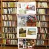 Colindul Cărţilor – Biblioteca Judeţeană Dăruieşte