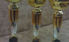 Sportivii vrânceni de performanţă premiaţi de DJST