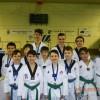 Medalii pentru lotul vrancean de taekwondo