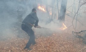 Polițiștii zilei sunt de la posturilor de poliție Dumitrești și Chiojdeni