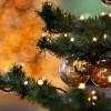 Crăciun fericit! Dani Gongu – director DJTS Vrancea