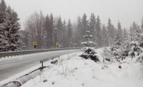 Zăpada mieilor pe Ojdula