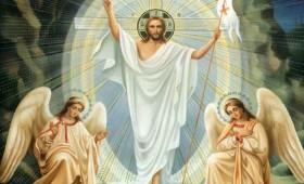 Cristos a Înviat! – deputat Ion Ștefan