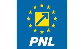 PNL Vrancea: Oprișan și-a pierdut simțul realității