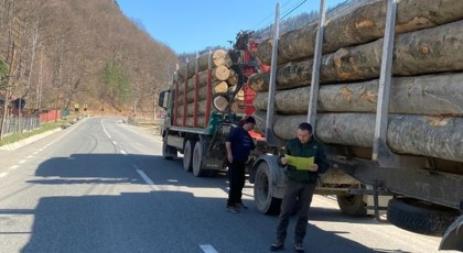 Acțiuni de control ale Gărzii Forestiere Vrancea