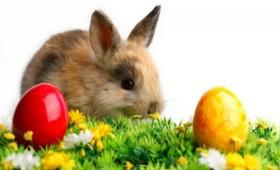 Paște fericit! Nicolae Mărăscu – primarul orașului Panciu