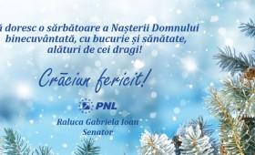 Crăciun fericit! Raluca Ioan – senator PNL Vrancea