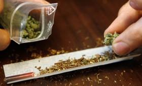 Cannabis cultivat in ghivece la Marasesti